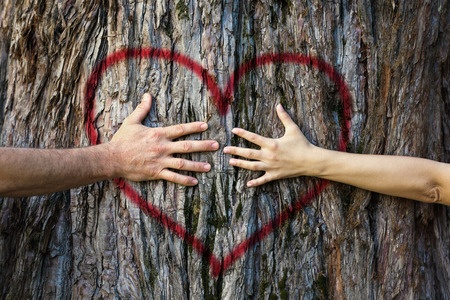 illustration of hands hugging tree symbolizing love for nature