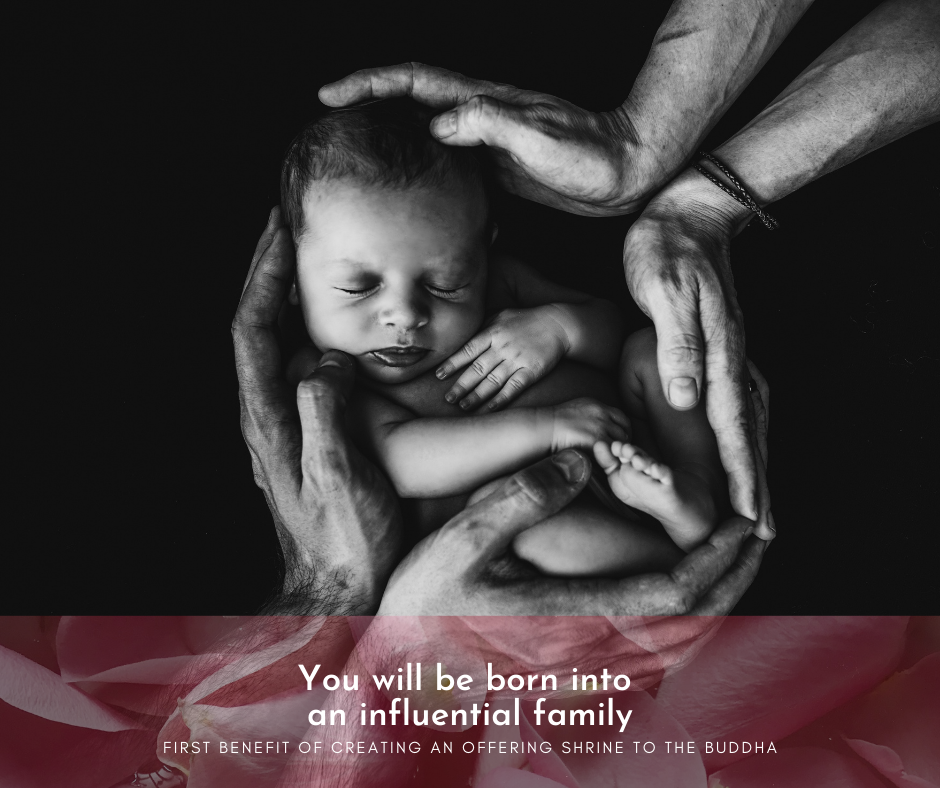You will be born into an influential family.